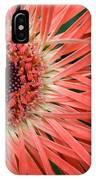 Dsc919d1-001 IPhone Case