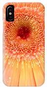 Dscn5240a1 IPhone Case