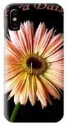 Dscn6163a IPhone Case