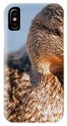 Duck In Water IPhone Case