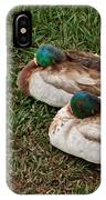 Ducks At Rest IPhone Case