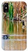 Ducks In A Marsh IPhone Case