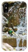 Ducks In The Falls IPhone Case