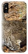 Dusky Grouse With Chicks IPhone Case