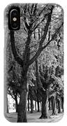 Dutch City Trees - Black And White IPhone Case