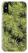 Dwarf Evergreen IPhone Case