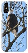 Bald Eagle Sunny Perch IPhone Case