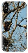 Eagle And The Fish 2 IPhone Case