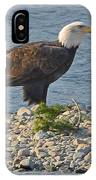 Eagle Couple IPhone Case