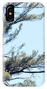 Eagle Nest IPhone Case
