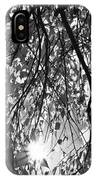 Early Autumn Monochrome IPhone Case