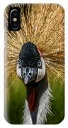 East African Crowned Crane Square Format IPhone Case