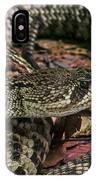 Eastern Diamondback Rattlesnake 1 IPhone Case