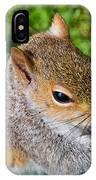 Eastern Grey Squirrel IPhone Case