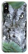 Eastern Screech Owl In Tree IPhone Case
