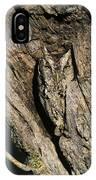 Eastern Screech-owl Otis Asio Wild Texas IPhone Case
