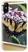 Eastern Tiger Swallow Tail IPhone Case