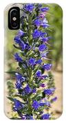 Echium Vulgare IPhone Case