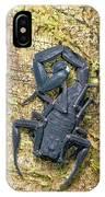 Ecuadorian Black Scorpion IPhone Case