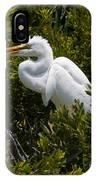 Egret In Bushes IPhone Case