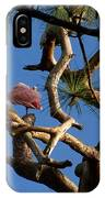 Egret Spoonbill And Stork IPhone Case