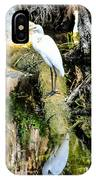Egrets Reflection IPhone Case