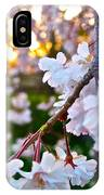 Einstein's Blossoms IPhone Case