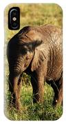Elephant Calf IPhone Case