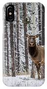 Elk In Jasper IPhone Case