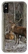 Elk Pictures 45 IPhone Case