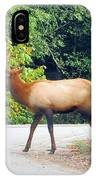 Elk Right Of Way IPhone Case
