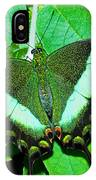 Emerald Swallowtail Butterfly IPhone Case