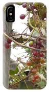 End Of Season Grapes IPhone Case