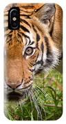 Endangered Species Sumatran Tiger IPhone Case