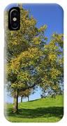 English Black Walnut Tree Switzerland IPhone Case