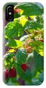English Raspberries IPhone Case
