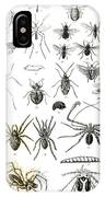 Entomology Myriapoda And Arachnida  IPhone Case