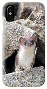 Ermine In Wildlife IPhone Case
