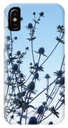 Eryngium Explosion IPhone Case