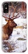 Estes Park Elk IPhone Case