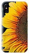 Eternal Sun IPhone Case