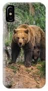 Eurasian Brown Bear 14 IPhone Case
