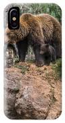 Eurasian Brown Bear 15 IPhone Case