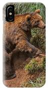 Eurasian Brown Bear 21 IPhone Case