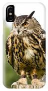 Eurasian Eagle Owl On Log IPhone Case