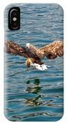 European Flying Sea Eagle 6 IPhone Case