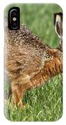 European Hare IPhone Case