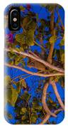Evening Blues IPhone Case
