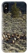 Evening Herd Of Elk   #7640 IPhone Case