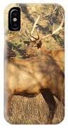 Evening Sets On The Elk IPhone Case